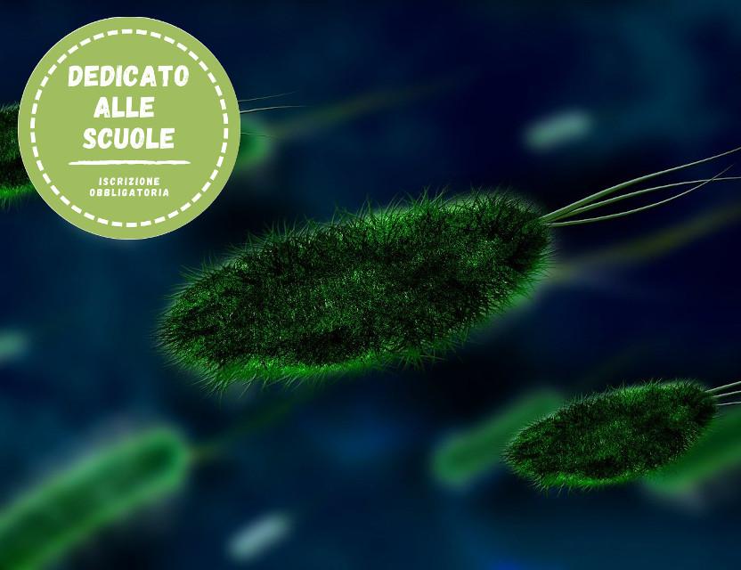 Micropolis! Non tutti i microbi vengono per nuocere