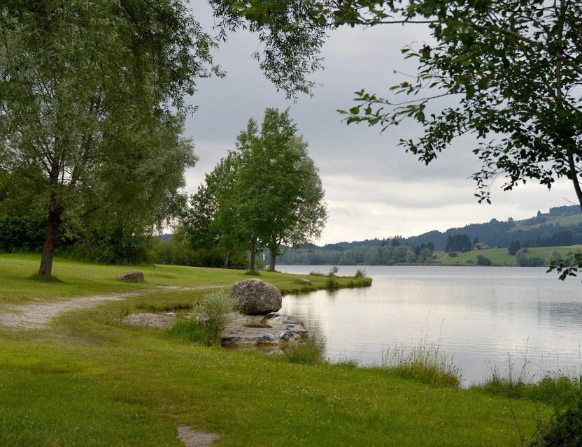La tutela delle acque – LIFEGREEN4BLUE