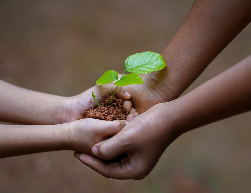 """""""Rete Aria"""": sostenibilità indispensabile. Un'economia sostenibile ai tempo del Covid"""